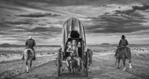 Amarillo by Morning David Yarrow