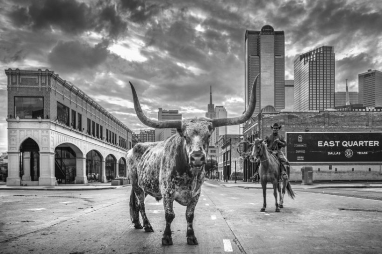 A Dallas Cowboy David Yarrow